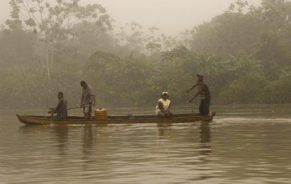 Desplazamientos masivos, la guerra sigue en El Chocó